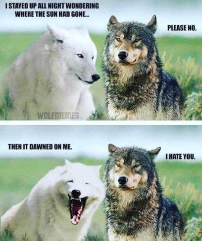 Mutual humor