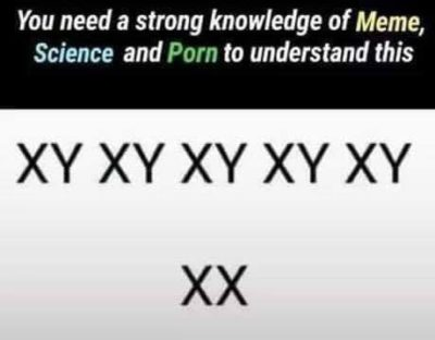 The knowledge of meme