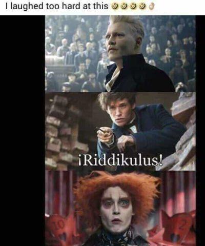 So hilarious 🤣👌🤣👌🤣👌🤣👌!!!!!!