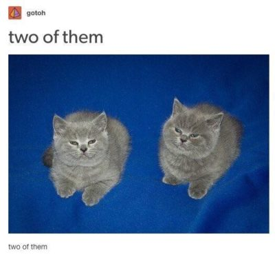 Two of them