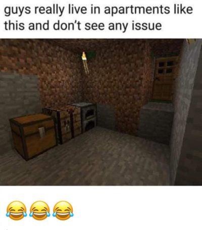 Good meme loses it's value in 5 seconds