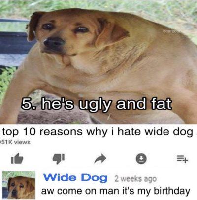 WIDE DOG!!!!