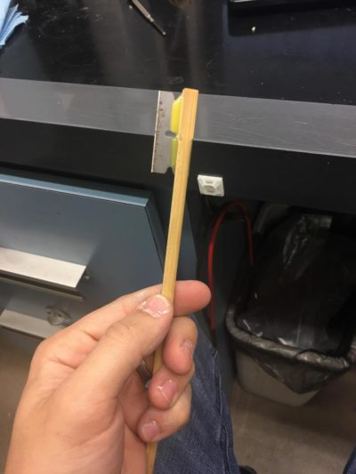Friend made a real chop stick.