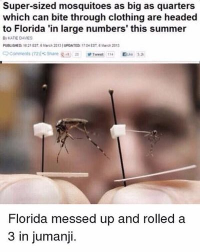 Florida people are super weird ngl