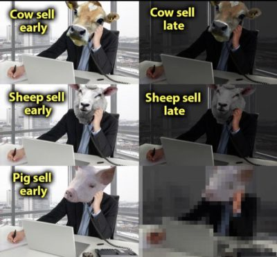 Pig sell…