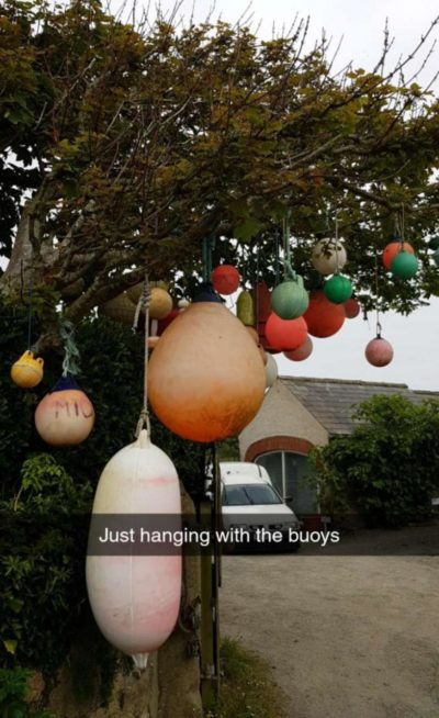Hanging with the buoys
