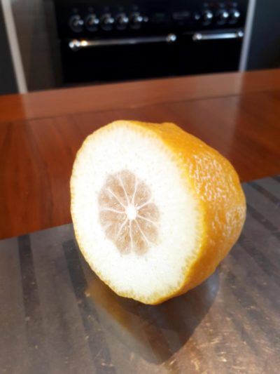 When life gives you lemons…..