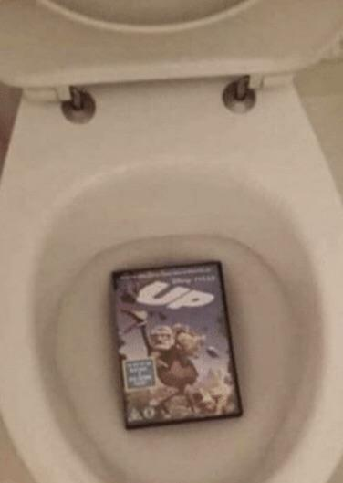 Threw Up in the Toilet
