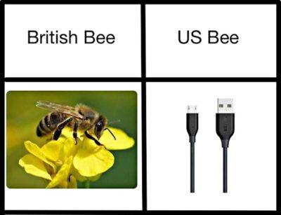 Us bee