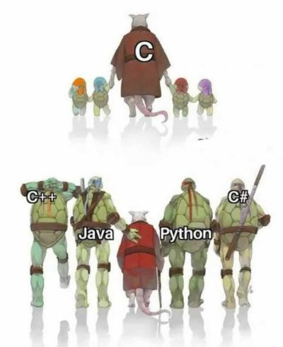 Every programmer must have deep knowledge of C programming because C is parents of all programming language