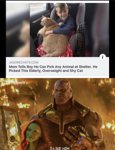 Thanos ruined it