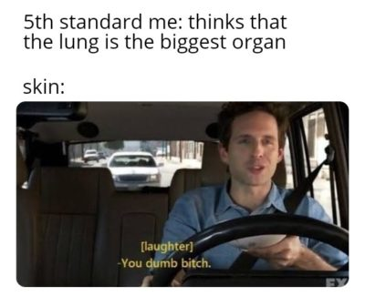 Teacher: Laughs in DNA