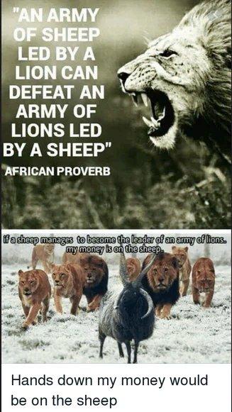 A proverb homicide