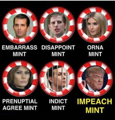 The Mint family