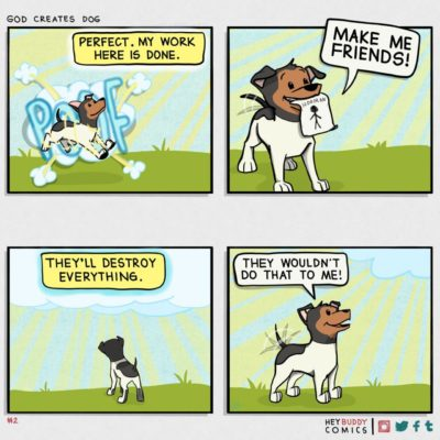 god creates dog