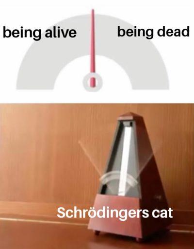 Schrödingers cat