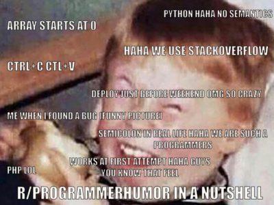 Programmer Humor in a nutshell