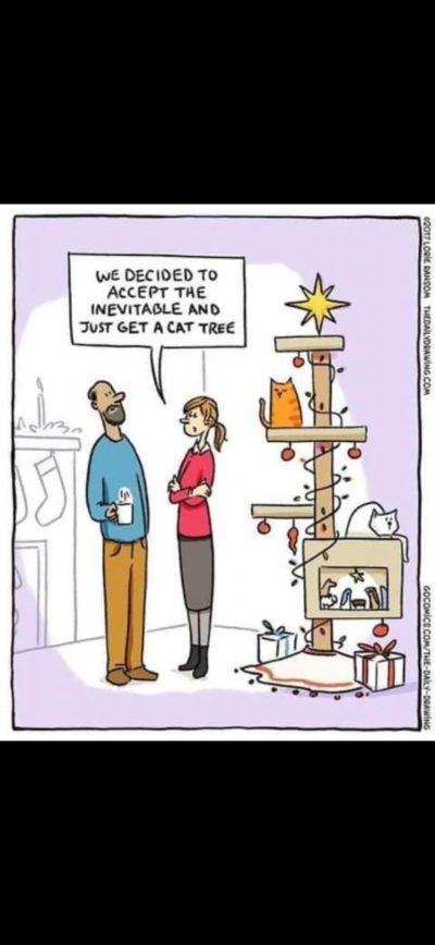 Ahh the Christmas Spirit