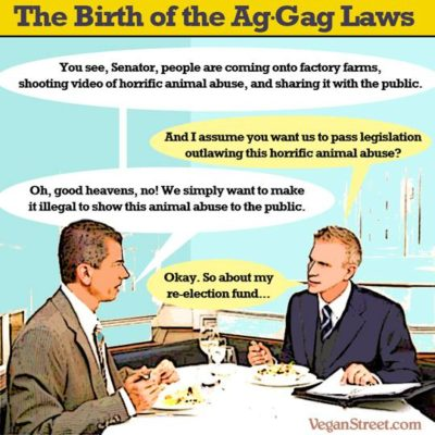 The birth of ag-gag laws