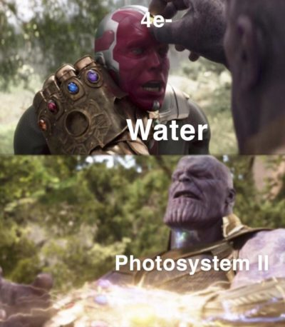 I'm sorry little one…