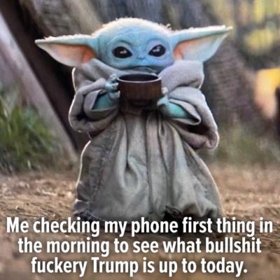 My Day Starter