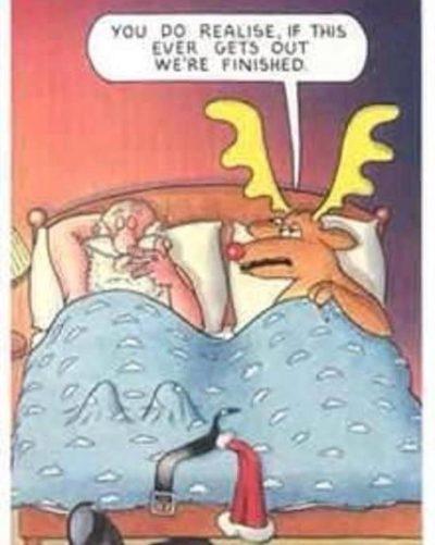 Horny Reindeer