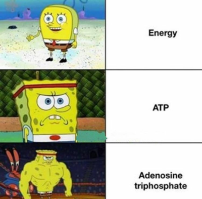 ATP SpongeBob meme. Made for r/asdfmemes