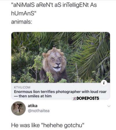 hehehe gOtChU