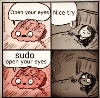 sudo apt-get install openeyes
