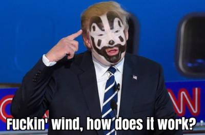 Insane Trump Posse