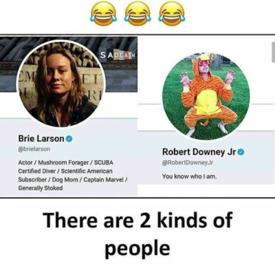 Get it guys? Because brie larson 😂😂😂