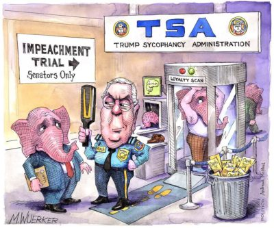 TSA – Trump Sycophancy Administration