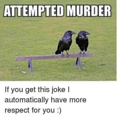 Stupid Facebook memes