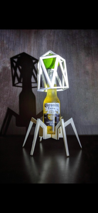 Corona but a virus