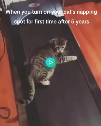 5 years a bed, gone in 5 seconds