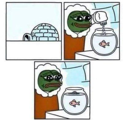 Pepe memes are classics