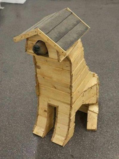 I ordered a dog house