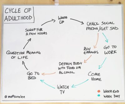 Cycle of adulthood