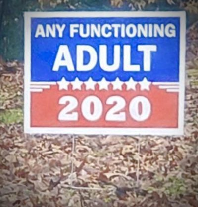 Who is ready for election season ???