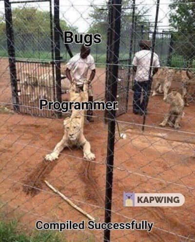 I hate bugs!!
