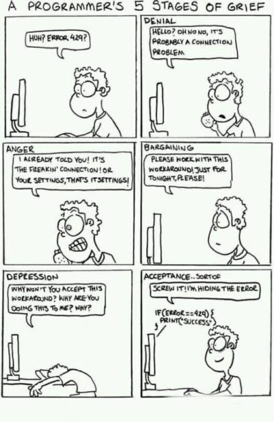 5 stages of Programmer's