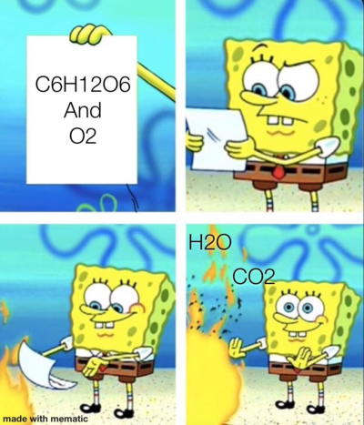 A chemistry meme for y'all