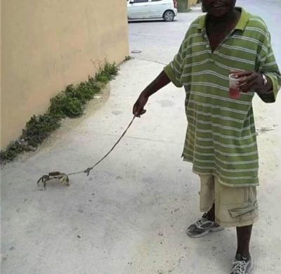Please, I really need some Karma so I can post. Thank you; also enjoy this picture of this man walking his crab.