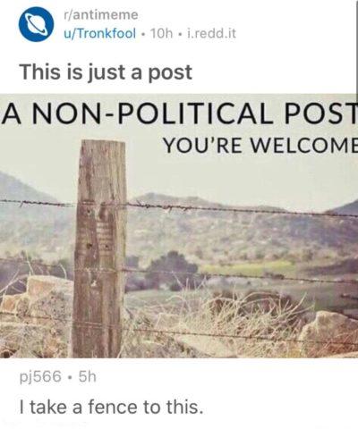 Political puns
