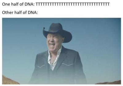 Biology meme