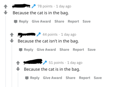 Actually the cat is both 50% in the bad and 50% not in the bag until we open it
