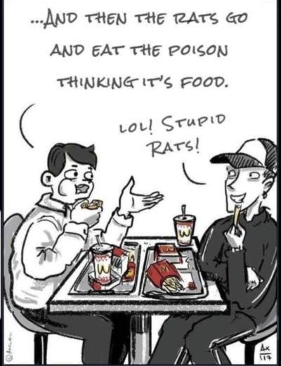 Haha junk food bad