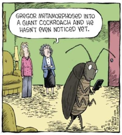 Phone bad cockroach good