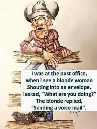 Blondes are dumb