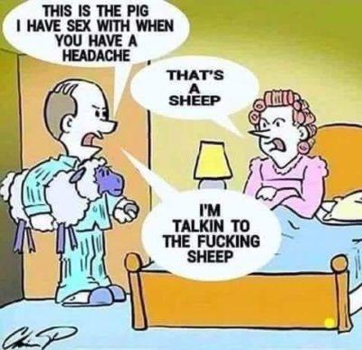 Wife bad, animal abuse good